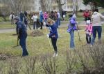 Около 150 работников с семьями приняли участие в традиционной акции «Зеленая весна»